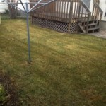 4 Seasons property care grass winnipeg