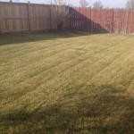4 Seasons property care grass cutting winnipeg